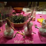 equinozio-di-primavera-2015-mater-vitae-45