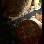 equinozio-di-primavera-2015-mater-vitae-53
