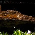 Full Moon Night - Mater Vitae