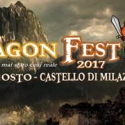 DRAGON FEST BANNER